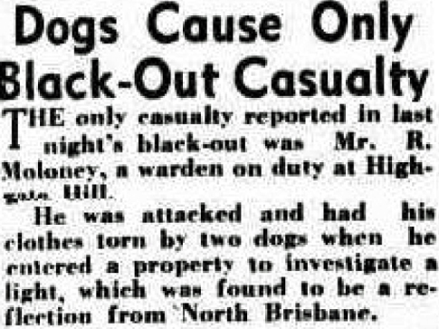 Dogs Cause only blackout casulaty Brisbane 1941