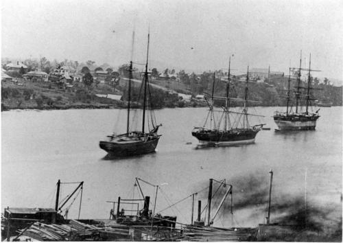 town reach 1878