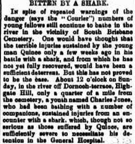shark attack brisbane river 1905