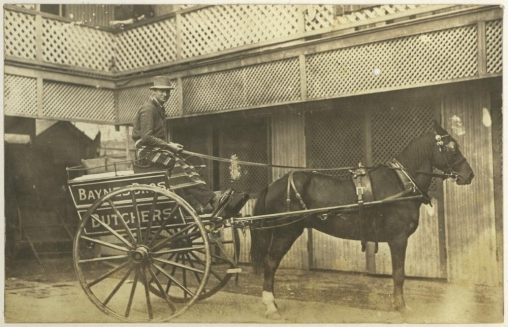 Baynes Limited butchers cart and driver 1921