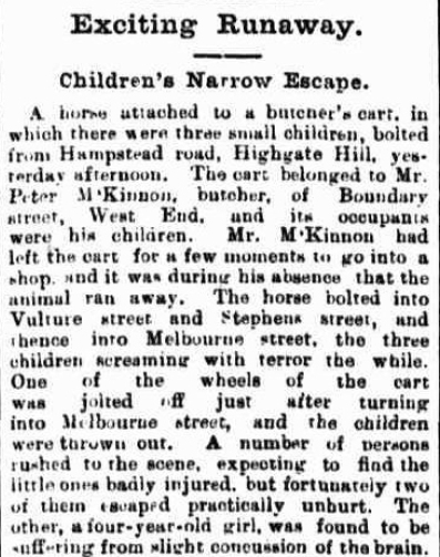 Telegraph (Brisbane, Qld. : 1872 - 1947), Thursday 31 October 19