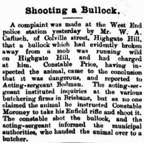 Bullock lose Colville Street Highgate Hill
