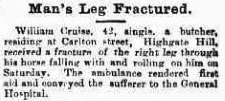 horse fractures leg carlton street
