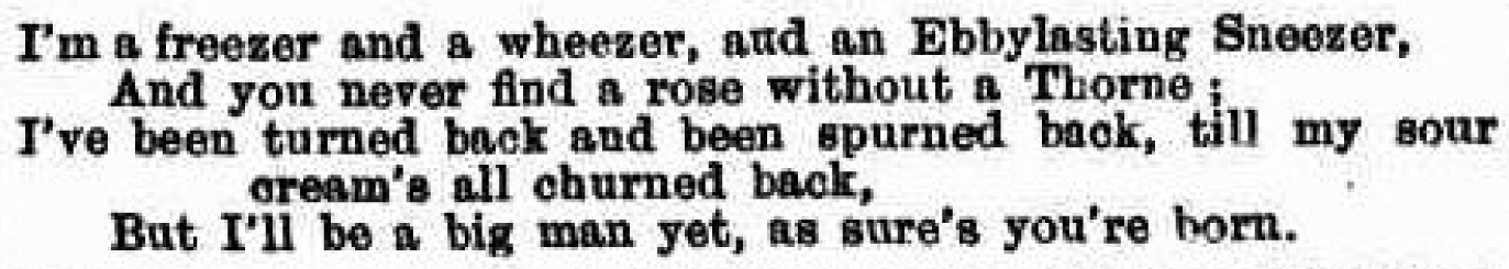Ebenezer Thorne poem Figaro 2nd February 1884