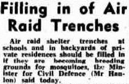 Telegraph (Brisbane, Qld. : 1872 - 1947), Thursday 18 November 1