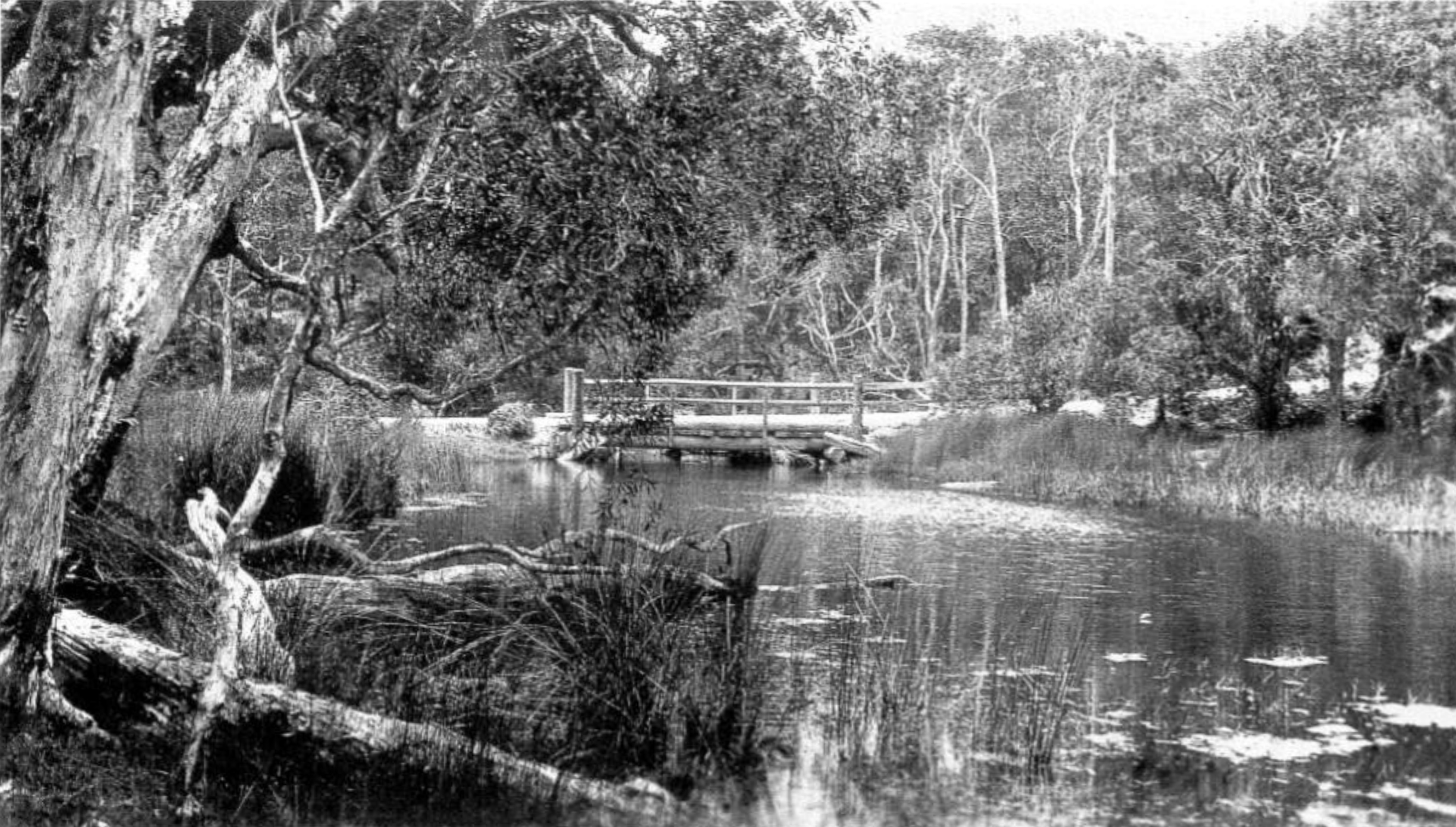 Creek and bridge at Clarence Corner