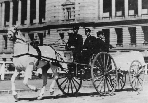 horse ambulance 2