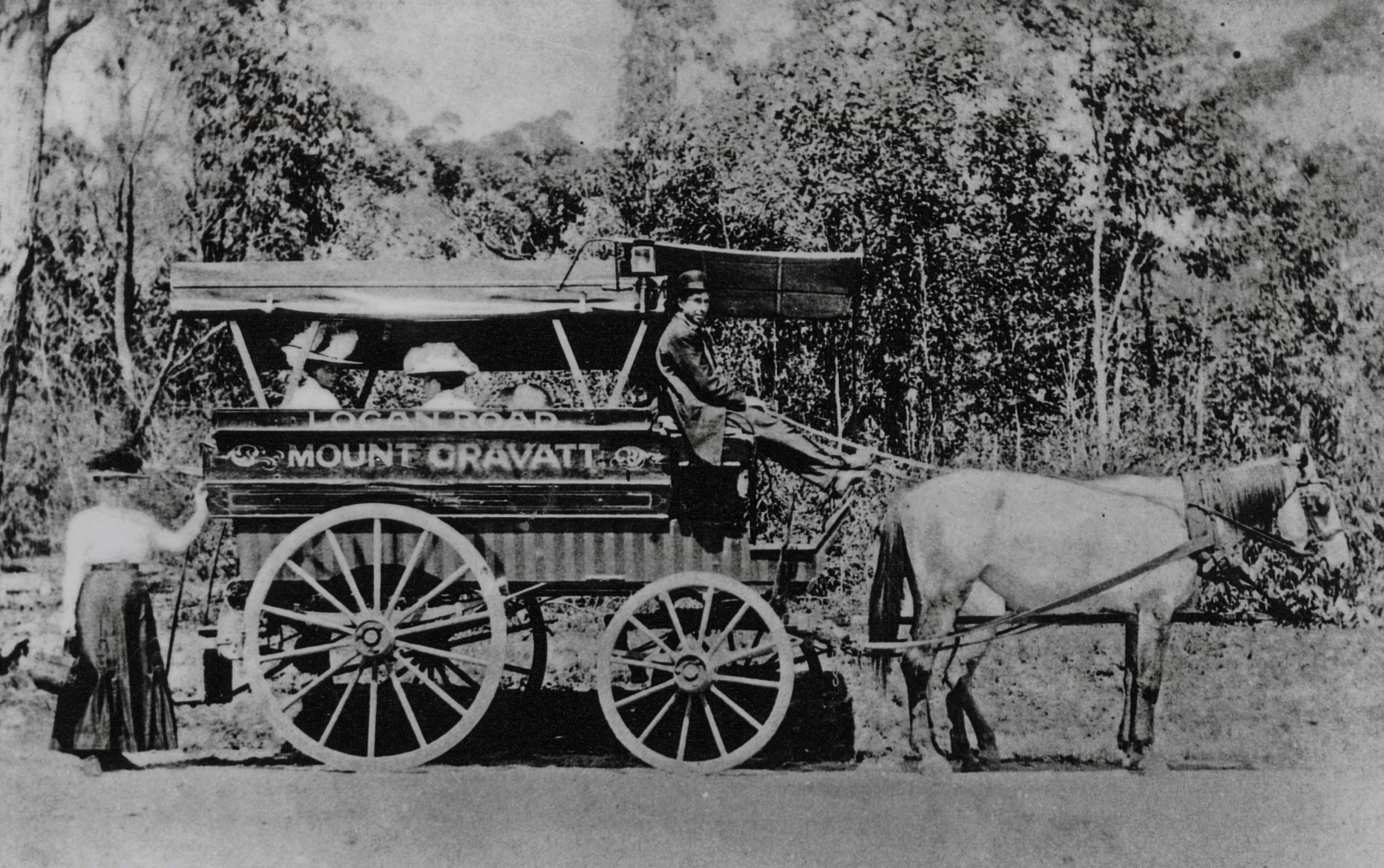 Horse bus transporting passengers at Mount Gravatt slq blog