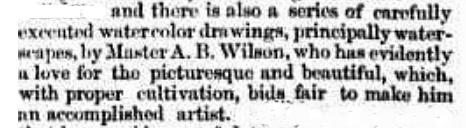 a b wilson 1873 art show