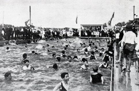 The Davies Park Pool, (Brisbane City Council)